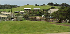 Ace Hi Riding Ranch - Port Augusta Accommodation