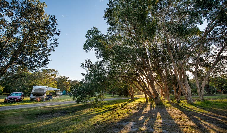 Delicate campground - Port Augusta Accommodation