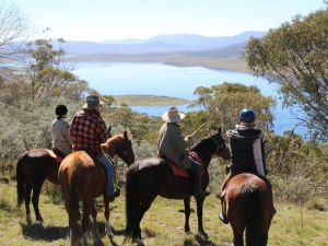 Reynella Homestead and Horseback Rides - Port Augusta Accommodation