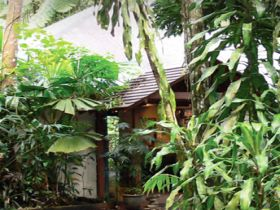 Heritage Lodge and Spa - In the Daintree - Port Augusta Accommodation
