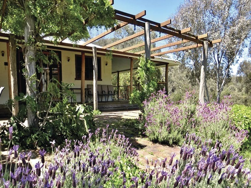Capertee Homestead - 'Port Macquarie' - Port Augusta Accommodation