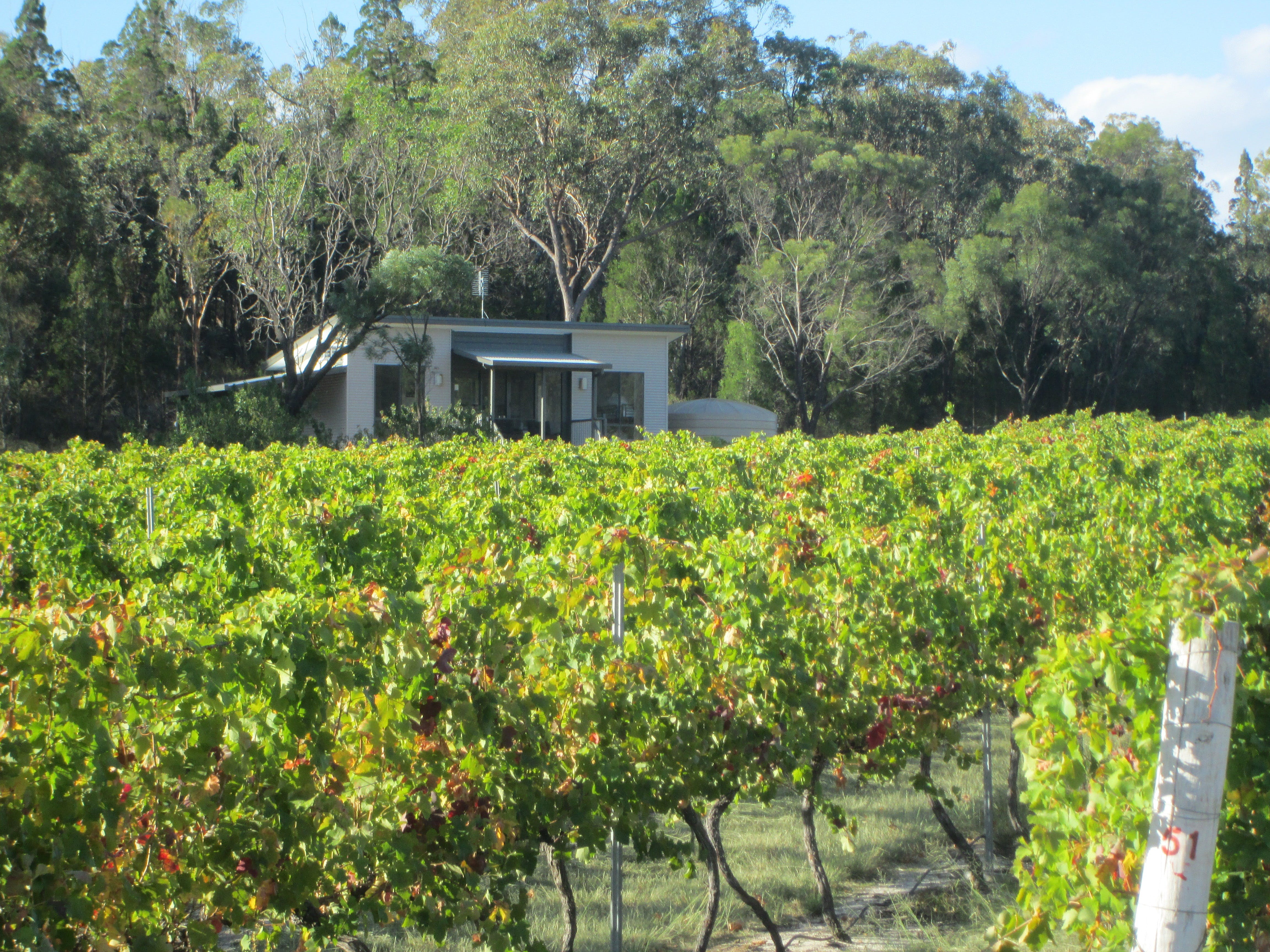 Just Red Wines Vineyard Cabins - Port Augusta Accommodation