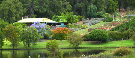 Pemberton Lavender and Berry Farm Cafe and Cottages - Port Augusta Accommodation