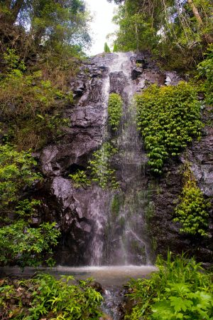 Nimbin Waterfall Retreat - Port Augusta Accommodation