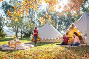 Valley View Glamping - Port Augusta Accommodation