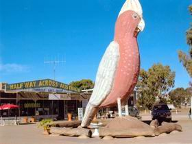 The Big Galah - Port Augusta Accommodation