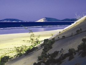 Cooloola Great Sandy National Park - Port Augusta Accommodation