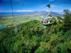 Skyrail Rainforest Cableway - Port Augusta Accommodation