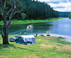 Danbulla National Park and Danbulla State Forest - Port Augusta Accommodation