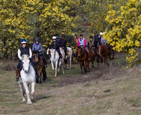 Burnelee Excursions on Horseback - Port Augusta Accommodation