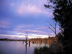 Loch Luna Game Reserve and Moorook Game Reserve - Port Augusta Accommodation