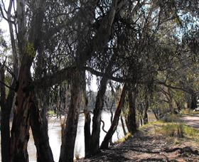 Mia Forest Drives Narrandera - Port Augusta Accommodation
