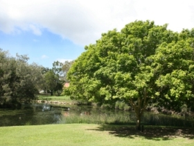 Hervey Bay Botanic Gardens - Port Augusta Accommodation