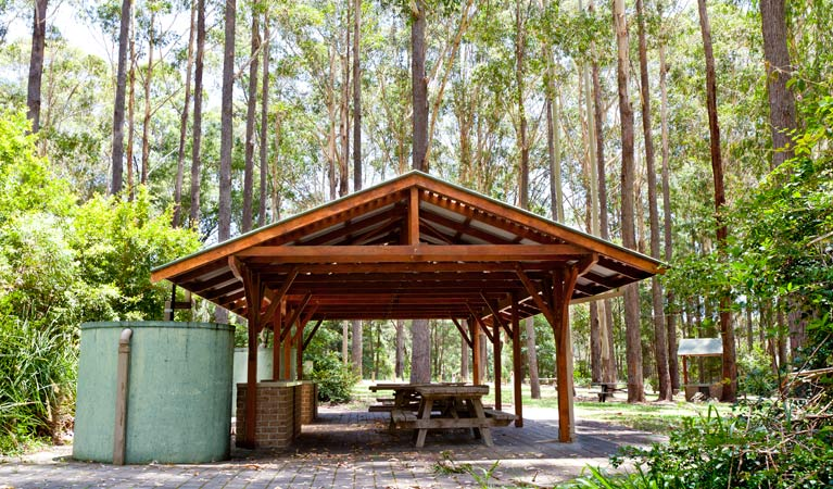 Bongil picnic area - Port Augusta Accommodation