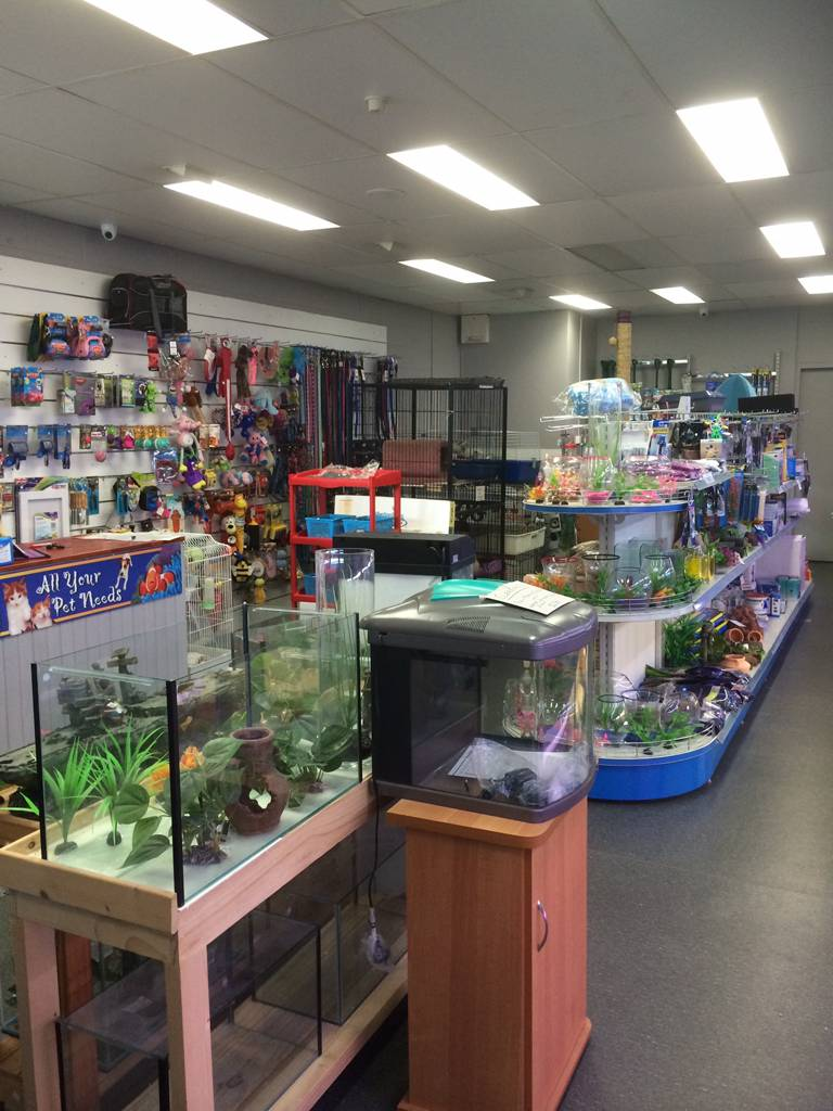 Nambour Pet Shop - Port Augusta Accommodation