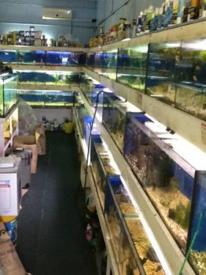 Clearwater Aquariums - Port Augusta Accommodation