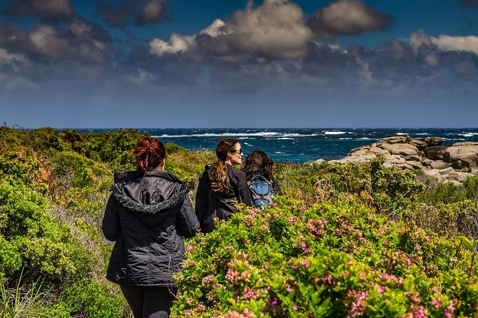 Guided Walks on the Cape to Cape - Wilyabrup Cliffs