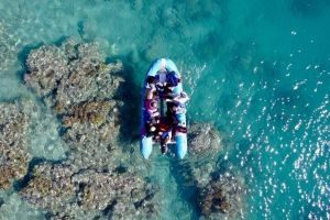 Glass-bottom boat tour with Whitehaven Beach - Port Augusta Accommodation