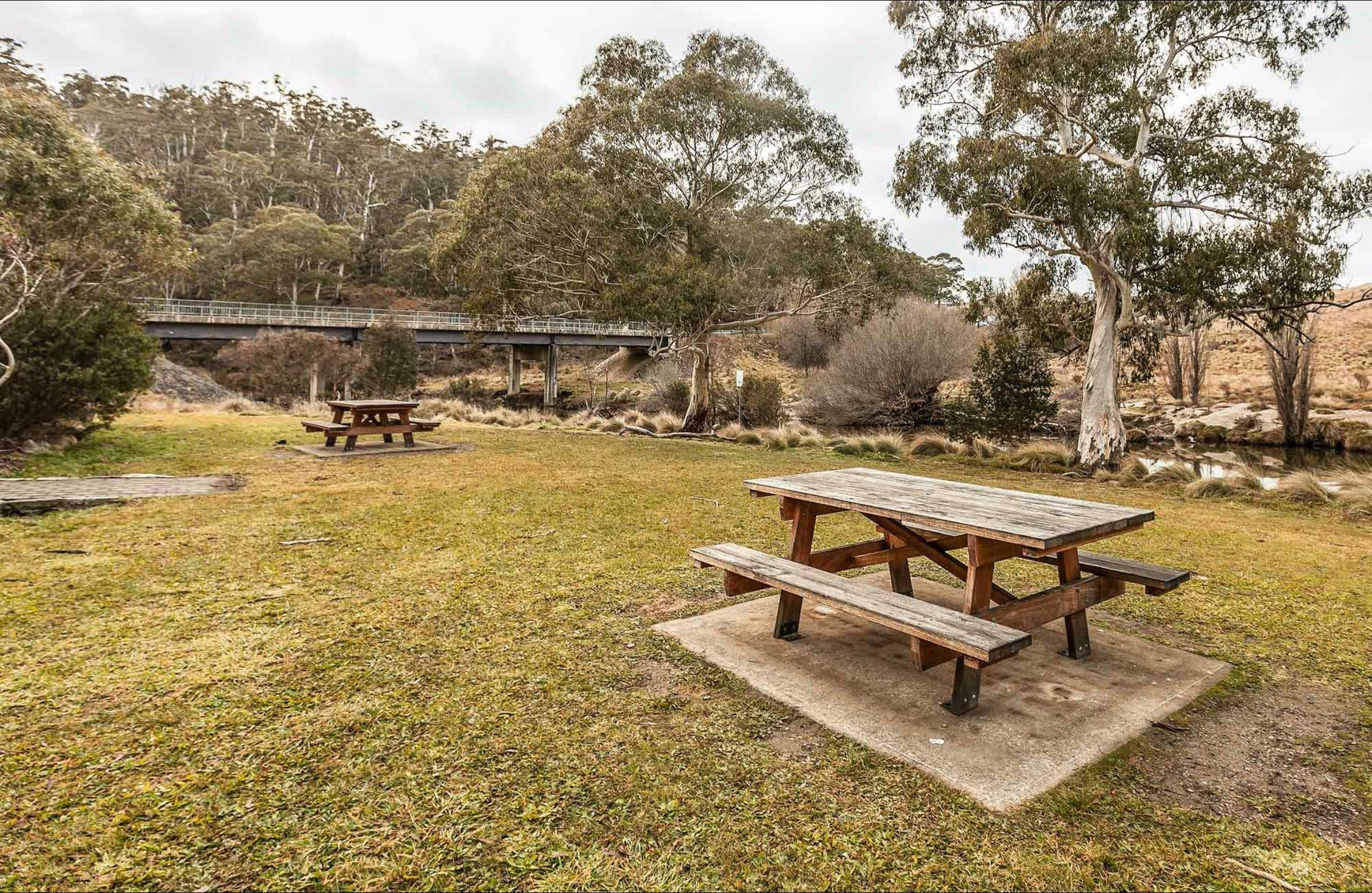 Thredbo River picnic area - Port Augusta Accommodation