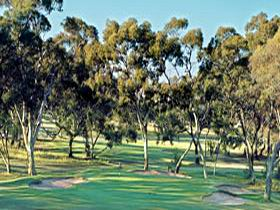Tanunda Pines Golf Club - Port Augusta Accommodation