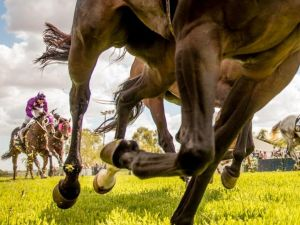 Night Markets and Race Day - Port Augusta Accommodation