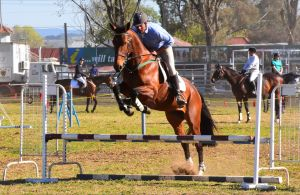 Glen Innes Pastoral and Agricultural Show - Port Augusta Accommodation