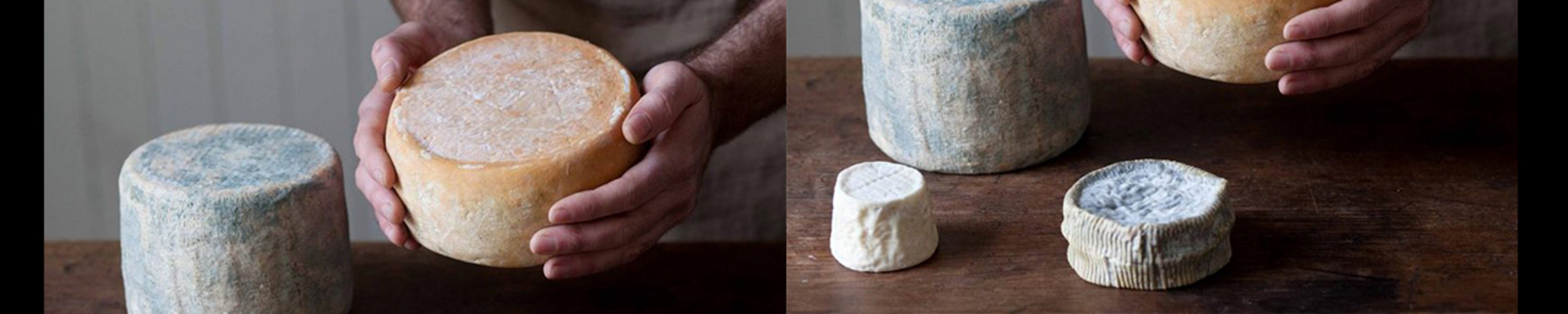 Cheese Making Basics Class - Port Augusta Accommodation