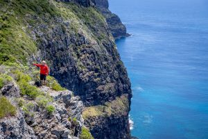 Seven Peaks Walk at Pinetrees Lord Howe Island - Port Augusta Accommodation