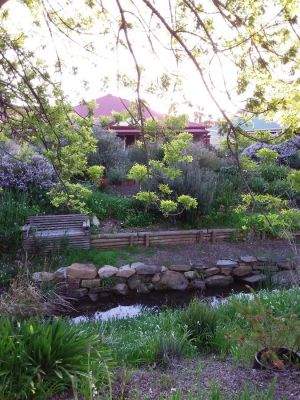Frog Song at Willunga - Port Augusta Accommodation